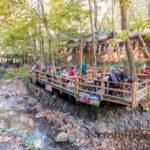 sapanca masukiye nature waterfall rental minivan istanbul minivan